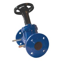 "4"" Ductile Iron Double Regulating Valve"